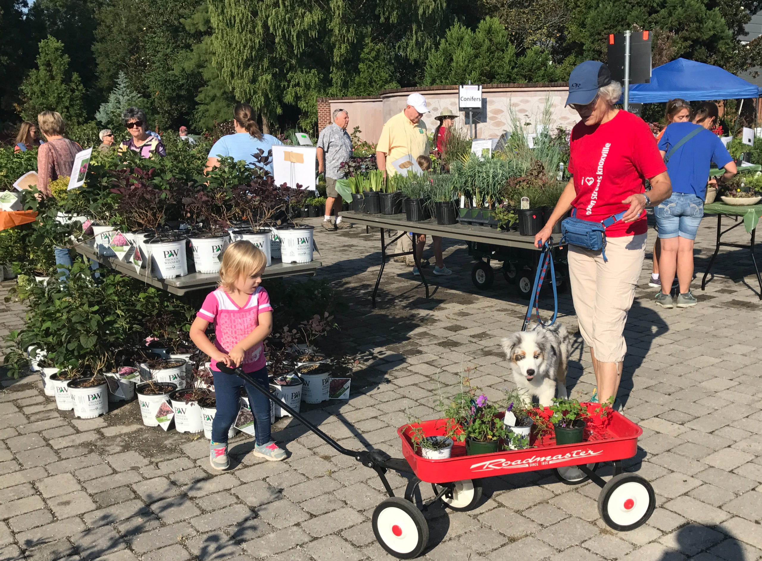 Image of plant sale attendees carrying plant purchases with a red wagon