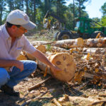 David Mercker shows a cut tree and describes what the wood will be used for.